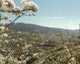 Valle de la Vera