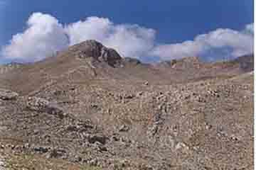 Delphi - Gerontovrachos
