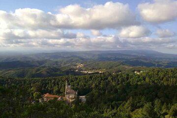 Coimbra - Padurea din Bucaco