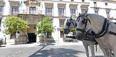 Cazare ieftina Jerez de la Frontera
