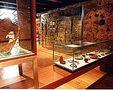 Nucleo Museologico