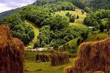 Sighetu Marmatiei - Valea Izei