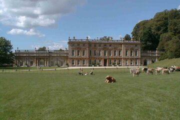 Bath - Dyrham Park