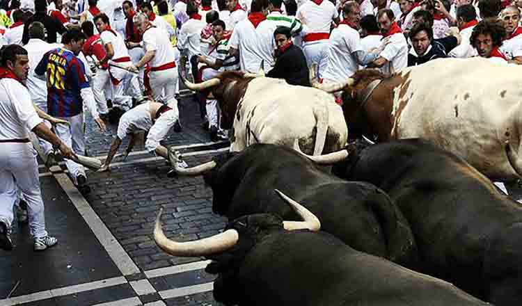 Obiective turistice Pamplona din Spania