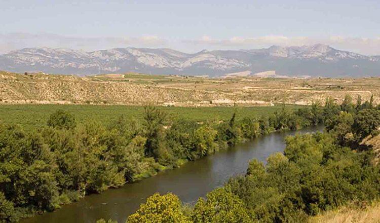 Raul Ebro