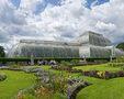 Gradina botanica Kew