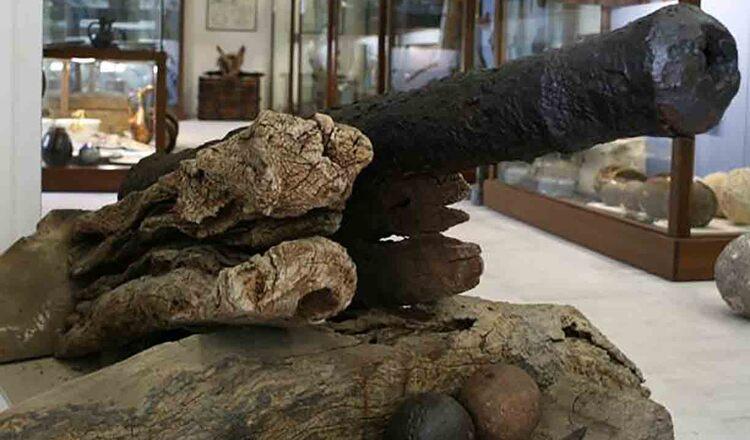 Muzeul Mavrikis