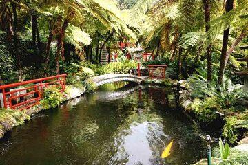 Madeira - Gradina Tropicala Monte Palace