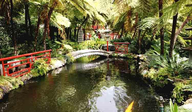 Gradina Tropicala Monte Palace