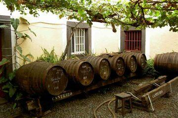 Funchal - Vinaria Adegas de Sao Francisco