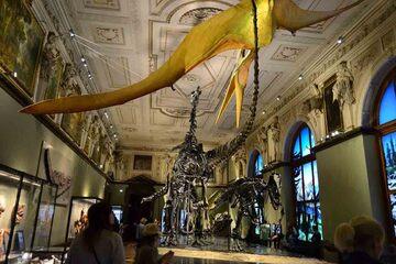 Viena - Muzeul de Istorie Naturala