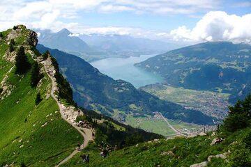 Interlaken - Platoul Schynige