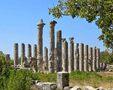 Templul lui Jupiter Olbios