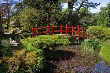 Kildare - Gradinile japoneze Gradinile