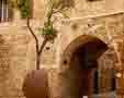 Manastirea Sf Nicolae
