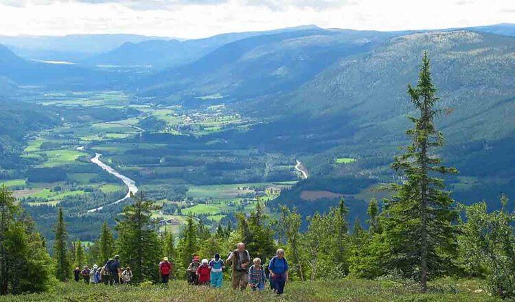 Obiective turistice Osterdalen si Rendalen din Norvegia