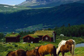 Otta - Parcul National Dovrefjell