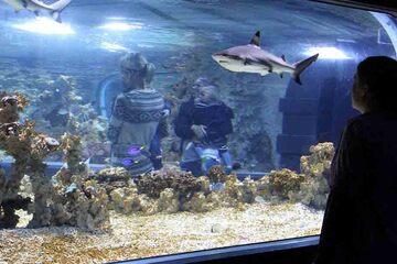 Bergen - Akvariet