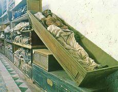 Poze Catacombele Capucinilor