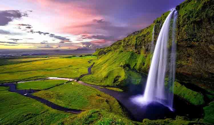 In Islanda nu exista tantari
